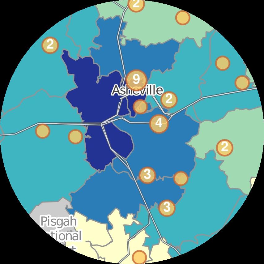 SimplyAnalytics map of Asheville